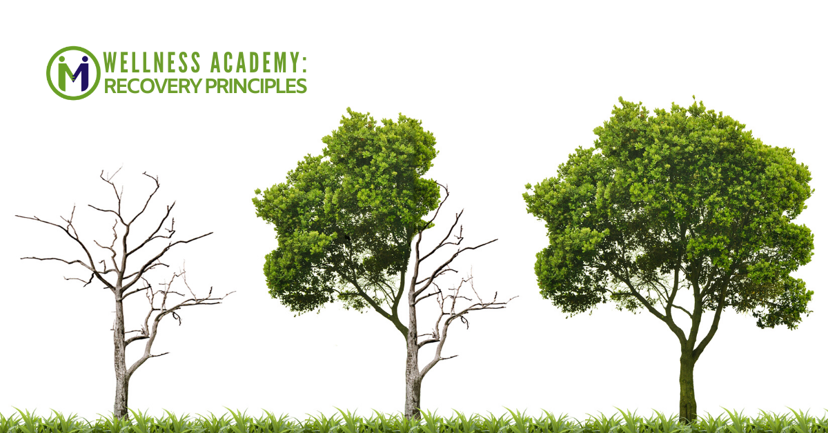 Wellness Academy: Recovery Principles - Session 1