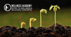 Introduction to Wellness and Recovery Concepts
