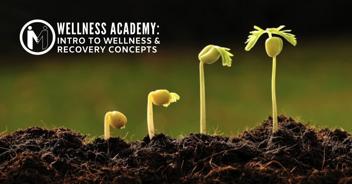 Wellness Academy: Intro to Wellness and Recovery Concepts - Session 1